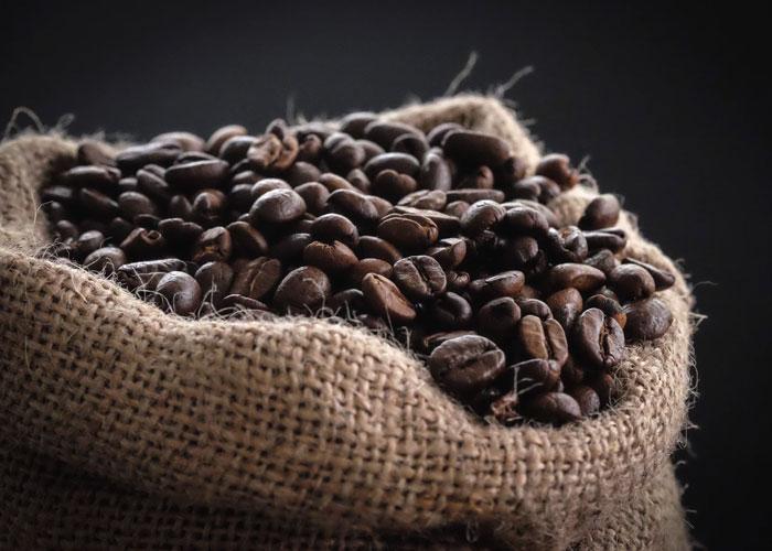 coffee agrotourism